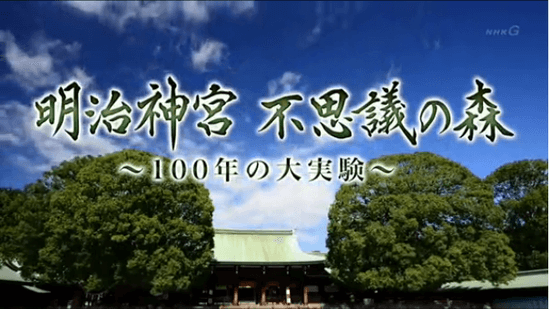 明治神宮 不思議の森 ~100年の大実験~