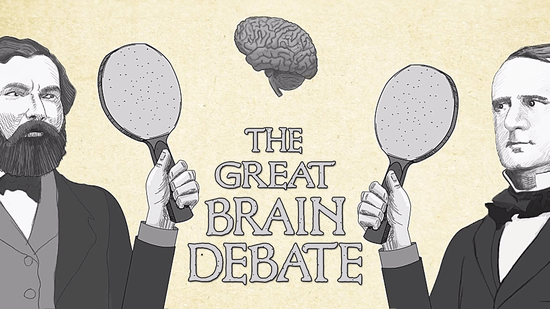 偉大なる脳の議論
