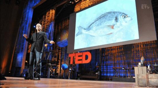 ダン・バーバー『魚に恋したシェフ』