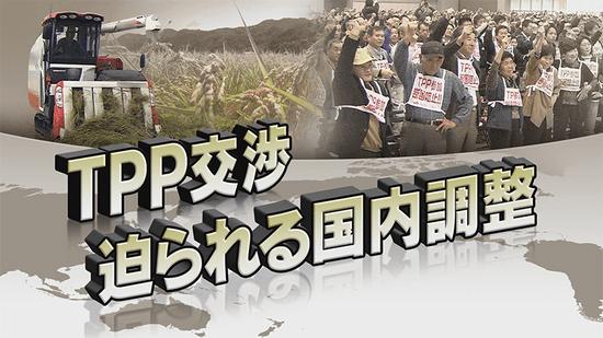 TPP交渉 迫られる国内調整