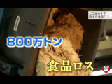 動き出した「食品ロス」対策/NHK・クローズアップ現代