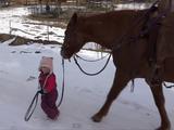 お馬さんの優しさにホッコリ♡ 雪道を散歩する「小さな女の子」と「大きなお馬さん」