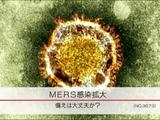 韓国で「MERSコロナウイルス」感染拡大 備えは大丈夫か?/NHK・クローズアップ現代