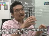 """""""眠り""""のミステリー睡眠研究 最前線!/NHK・サイエンスZERO"""