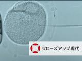 """遺伝子を自在に操ることがきる「ゲノム編集」の可能性と課題/NHK・クローズアップ現代「""""いのち""""を変える新技術 ~ゲノム編集 最前線~」"""