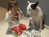 犬「これが魔の2歳児か…。」/女の子の「お医者さんごっこ」に付き合わされるワンコが完全に諦めモード