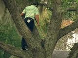 世界の一流プロゴルファーたちによる超難しい場所からのリカバリーショット ランキング