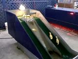 水が流れる「すべり台」で遊ぶアヒルの赤ちゃん