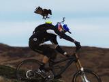 背中につけた標的をハヤブサに取られることなく自転車で走り切ったら人間の勝ち、取られたら負けなダウンヒル対決