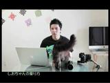 しゃべる猫「しおちゃん」の飼い主さんが教える、ネコ動画の撮り方・撮影方法