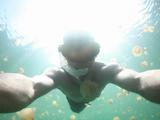 無数の淡水クラゲと泳げる湖/ジェリーフィッシュレイクに潜ったダイバー目線の映像が美しすぎる