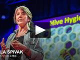 ミツバチの大量死について、その原因と対策/マーラ・スピヴァク