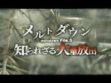 NHKスペシャル「メルトダウン File.5 知られざる放射能大量放出」