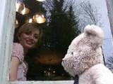 ちょっぴり短気だけど哀愁たっぷりで憎めないテディベアが主人公の物語「Misery Bear(ミザリーベア)」/バレンタインデー編