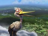ピクサーが制作したほのぼの系・短編アニメーション「Partly Cloudy」