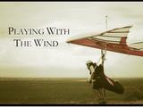 ハンググライダーがどうやって離陸して、どうやって着陸するかが良く分かる映像作品「Playing with the Wind」