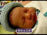 "NHKスペシャル「人体""製造"" ~再生医療の衝撃~」"