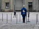 スウェーデン王室の衛兵さんを真似する男の子がカワイイと評判