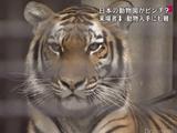 いつまでも、あると思うな、親と「動物園」/NEWS23