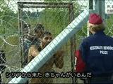 ヨーロッパ激震 押し寄せる難民/NHK・クローズアップ現代