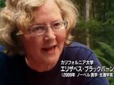 老いを止める ~人類の夢は実現するか~/BS世界のドキュメンタリー