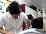 「一竿子忠綱(いっかんし・ただつな)」がやってきた!しゃべる猫しおちゃんの飼い主さんが「究極の和包丁」を動画レビュー