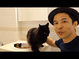 しゃべる猫「しおちゃん」の引っ越しドキュメンタリー 【NY(マンハッタン島)・脱出編】 その2/新居に到着してひとまずトイレに避難する しおちゃん and ティーちゃん