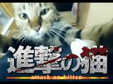 人気アニメ「進撃の巨人」のオープニングを意識したネコ動画「進撃のねこ」のクオリティが高すぎる!/ネットの声「何十回とみててもあきないww」