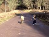 お散歩中に魅惑的な水たまりを発見してしまい、持っていた犬のリードを地面に置いて心ゆくまで遊ぶことにした3歳ぐらいの男の子と、それをお行儀良く待つワンコ