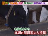 TPP参加で日本の酪農は壊滅するのか?/そもそも総研