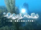 東日本大震災の津波で大きな被害を受けた三陸の海。海の中で何が起き、生態系にどういう影響が出て、今どうなっているのか? 水中映像で迫る。/NHKスペシャル