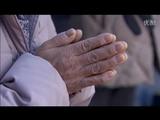 NHK・ETV特集「海辺の町に生き続ける ~南三陸町の一年~」