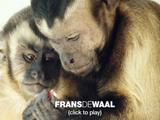 人間以外の動物がみせる「利他行動」について実験映像をまじえて解説/フランス・ドゥ・ヴァール博士「良識ある行動をとる動物たち」