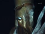NHKスペシャル「世界初撮影! 深海の超巨大イカ」