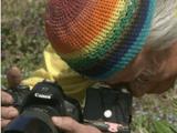 NHKスペシャル「足元の小宇宙 ~生命を見つめる 植物写真家~」/埴沙萠(はにしゃぼう)