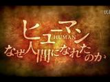 NHKスペシャル「ヒューマン-なぜ人間になれたのか-/第2集 グレートジャーニーの果てに」