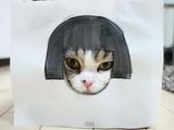 世界で一番有名なネコ、まるちゃんの詰め合わせ 第4弾/まるです4。(I am Maru 4.)