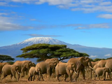 アフリカの僻地(へきち)医療に従事した実在の人物の体験をもとに生まれた名曲/さだまさし「風に立つライオン」