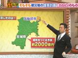 気仙沼の堤防計画に市民から疑問の声・復興予算を2000億円も使って作るのに、東日本大震災級の津波は防げず、高台移転が決まった場所でも建設/そもそも総研