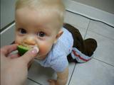 生まれて初めてレモンを食べた赤ちゃん