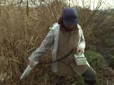 NHK・ETV特集「ネットワークでつくる放射能汚染地図6 ~川で何がおきているのか~」