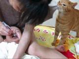 やめてあげて~! 歯磨きで泣き叫ぶ赤ちゃんを助けようとするネコ