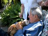 サプライズで子犬をプレゼントされたおじいちゃんが嬉し泣きしてるのを見てもらい泣きしそうになった件