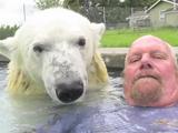 プールで一緒に泳げるぐらいシロクマと仲良しのおじさん