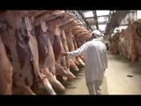 """NHKスペシャル「世界""""牛肉""""争奪戦」/ほとんどの日本人がまだ気づいていない「核心」に迫るドキュメンタリー"""