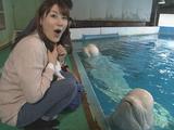 NHK・サイエンスZERO「イルカが話す!触れあう!不思議な能力の秘密」