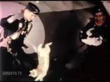 無重力になったらネコはどうするか?(実験映像)